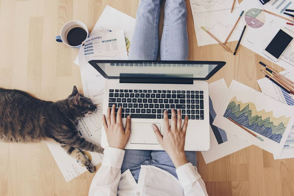 Thuiswerken op de vloer met kat erbij. Belgen overwegen carrièreswitch voor betere work-life balance – Loopbaanexpert.
